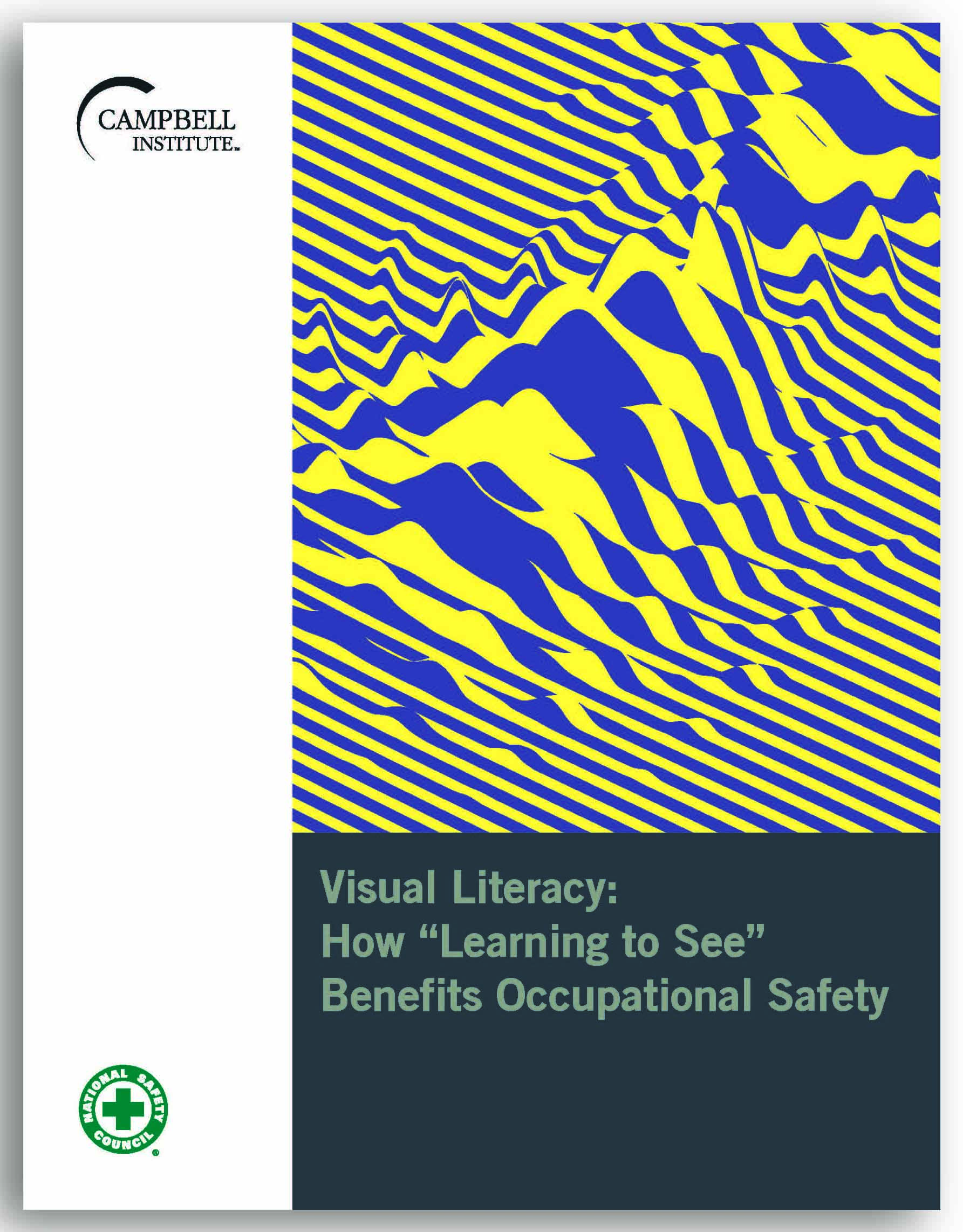 """Visual Literacy: How """"Learning to See"""" Benefits Occupational Safety"""