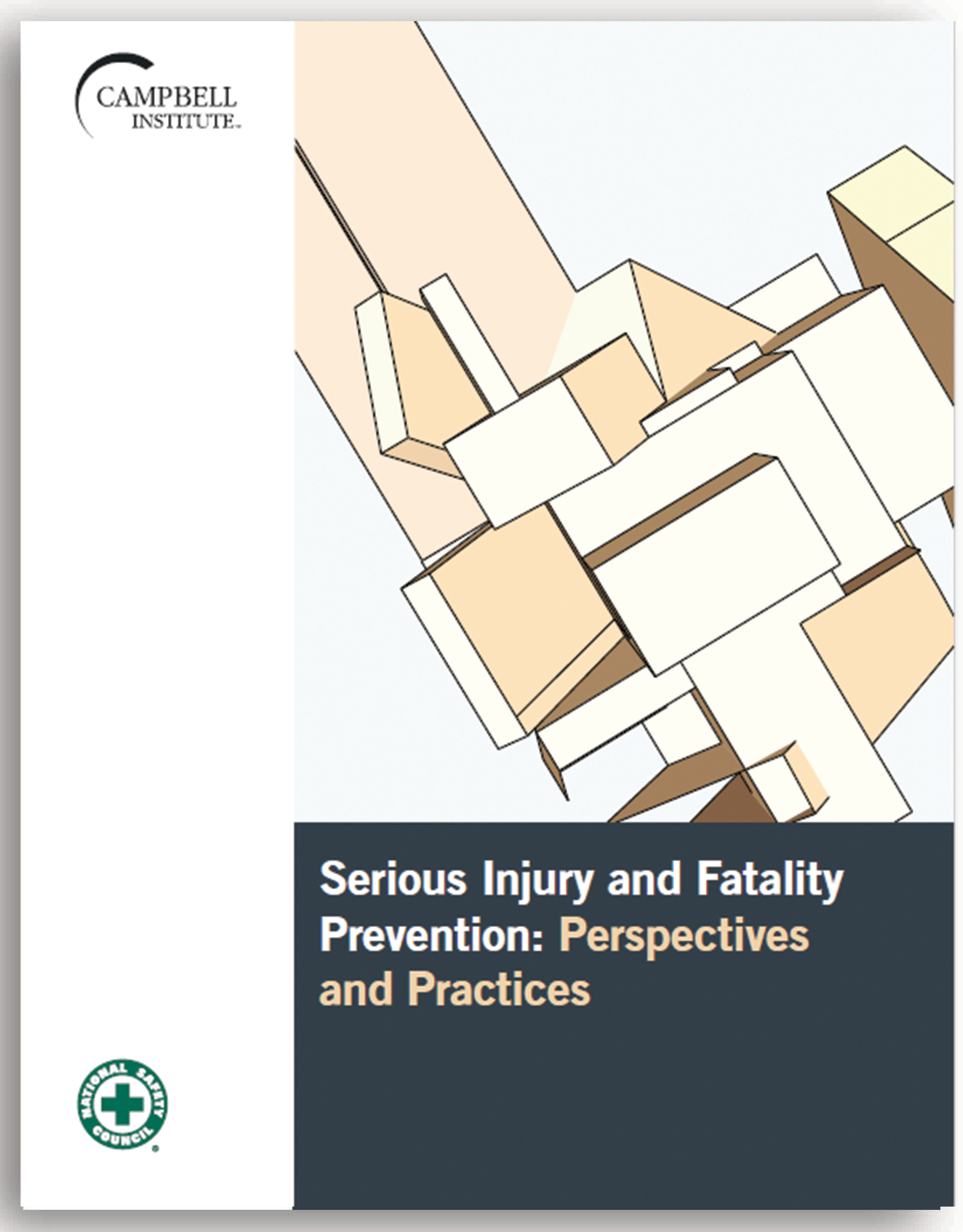 Serious Injury and Fatality Prevention: Perspectives and Practices