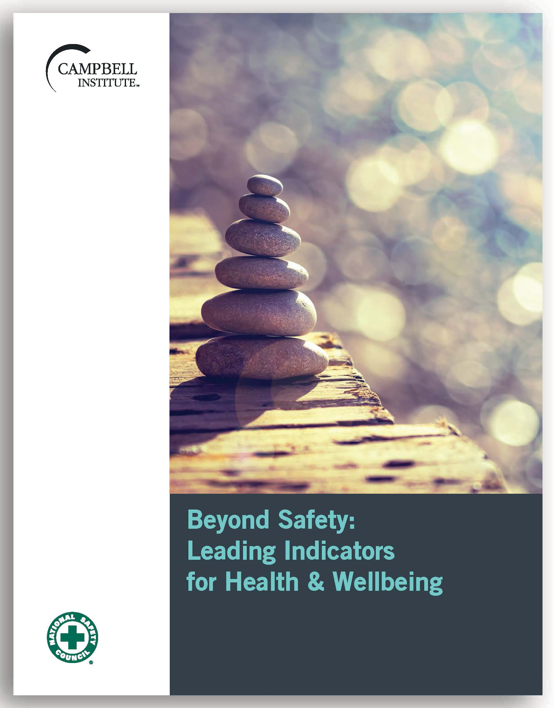 Beyond Safety Leading Indicators for Health and Wellbeing